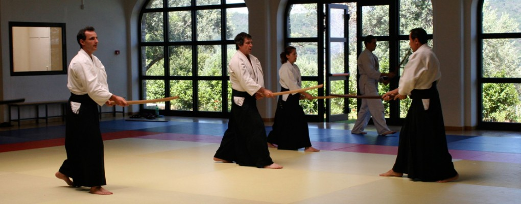 ecole tenchi aikido