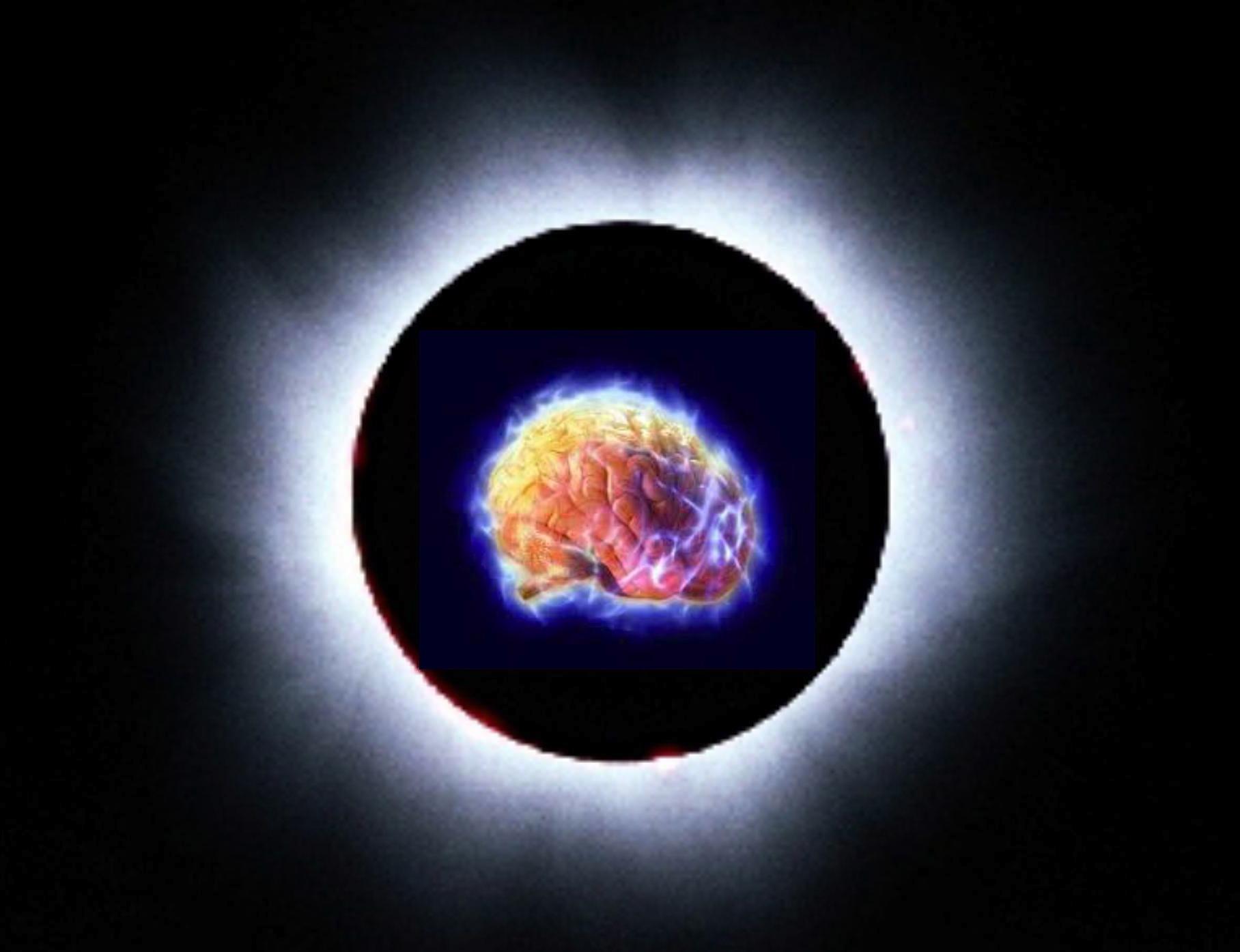 Le cerveau, le soleil et l'univers