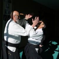 Stage ceintures noires janvier 2016 (photo Den)