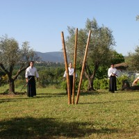 Abbaye 2010