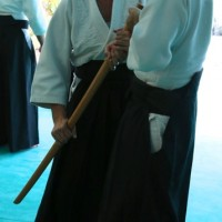 Stage ceintures noires Grimaud 13/10/13