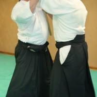 Stage ceintures noires 15/02/15