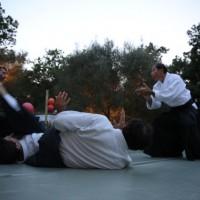 Démonstration à Ramatuelle 3/7/15 (photo Florence)