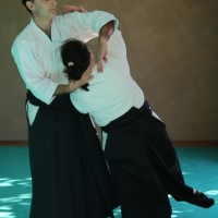 Stage ceintures noires Grimaud 11/10/15 (photo Den)